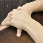 Tierheilpraktikerausbildung-erfahrungsbericht-Fernstudium